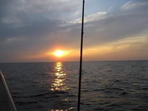 BigRed_sunset